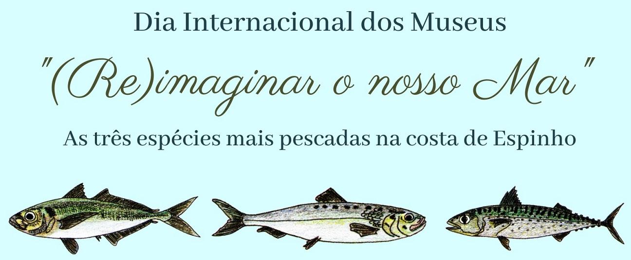 (RE)imaginar o nosso mar!
